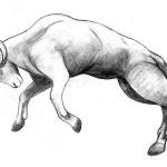 Sheep Crash