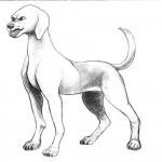 Dog Dodge